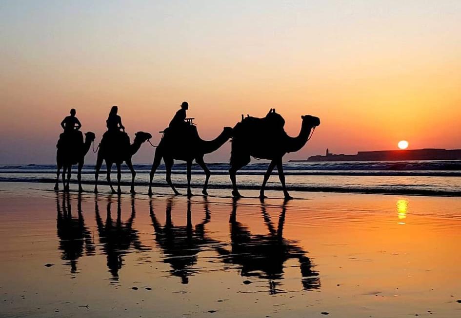 Marakeš/Maroko 2019. by IU&MS