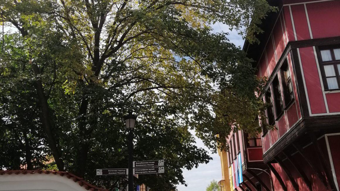 Bugarska/Plovdiv 2019. by MH